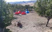 izci kampı1